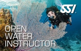 Open-Water-Instructor-300x190
