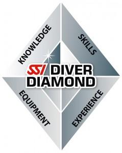 SSI_LOGO_Diamond_RGB