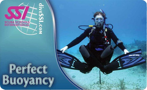 perfect bouyancy diver